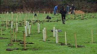 Tree planting at St Germain Nature Reserve