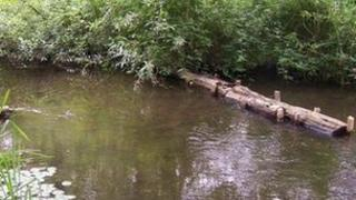 Logs used to alter river