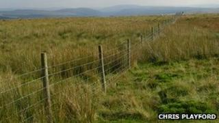 The fence in the Hepste Valley, Brecon Beacons