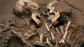 Neolithic skeletons (generic)