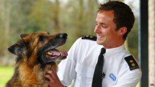 Rescued Alsatian cross Soldier with RSPCA inspector Patrick Bailey
