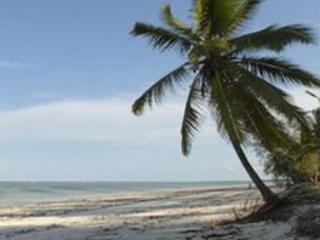 A beach in Zanzibar, Tanzania
