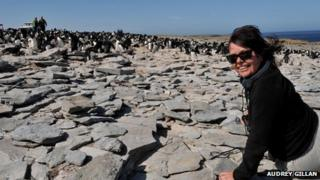 Audrey Gillan at a penguin colony