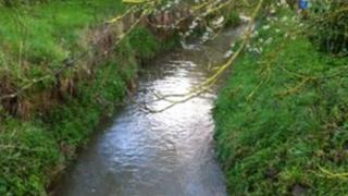 River Deben, Debenham, April 2012