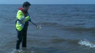 EAW officer takes samples in Clwyd Estuary
