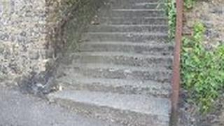 Steps near where the dog was found