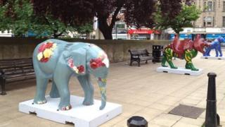 Safari animals in Northampton town centre