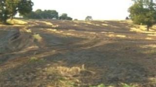 Farm land at Himley Hall