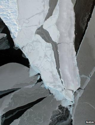 Arctic sea ice (Image: Nasa)