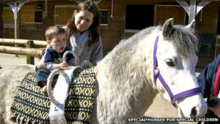 Special horses for special children