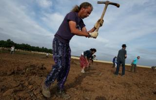 Farm workers union members dig abandoned land they have occupied