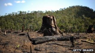 Deforestated land in Madagascar