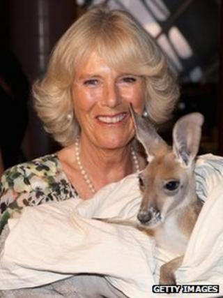Duchess of Cornwall with joey Rooby Blue