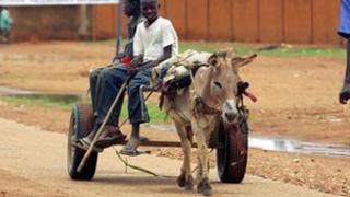 Boys ride a donkey (archive shot)