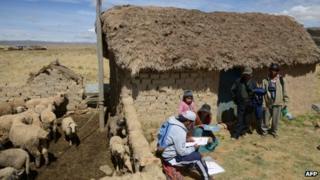 Bolivian census-taker
