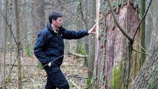 Adam Hart and an ash tree