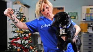 PDSA senior vet Sophie Bell with Charlie