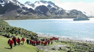 Antarctic tourists