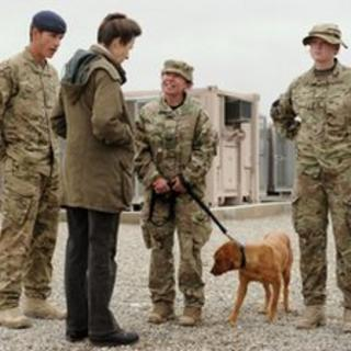 Princess Anne is given a tour of the Military Working Dogs Section