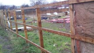 Dismantled allotment fencing