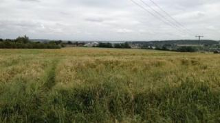 The site of the proposed crematorium in Wellingborough