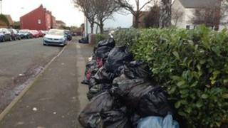 Rubbish bags on Brookfield Road, Hockley