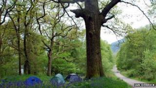 West Highland Way (image coutesy of Ian Derrick)