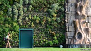 World's biggest vertical garden at Italian shopping mall