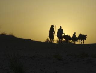 Tuareg family silhouetted with camels
