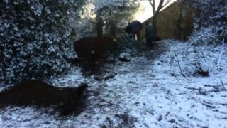 Holywells Park icehouse dig