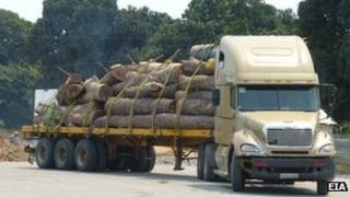 Truck carrying timber in Mozambique