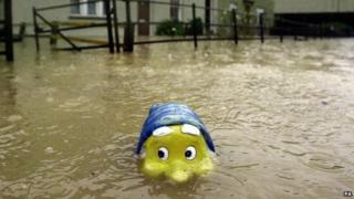 Gnome in flood water