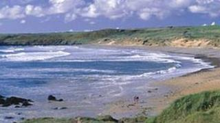 Freshwater West (Pic courtesy of Pembs council)