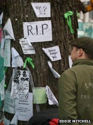 Notices on tree