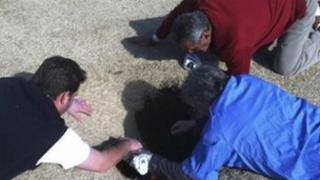 Hank Martinez, top, Ed Magaletta, right, and Russ Nobbe, look into an 18-foot-deep and 10-foot- wide sinkhole for golfer Mark Minhal 8 March 2013