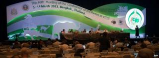 Cites meeting