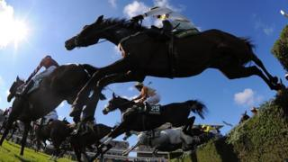 Horses jumping over a fence