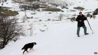 Gareth Wyn Jones with his sheepdog, who has helped save 70 ewes
