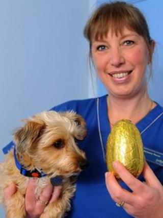 Poppy and vet nurse Karen Jones with an Easter egg