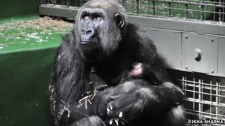 Bahasha and her baby