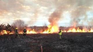 Scrubland fire