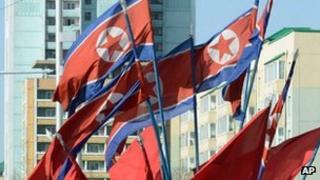 North Korea flags