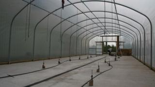 Poly tunnel at RAF Museum, Cosford