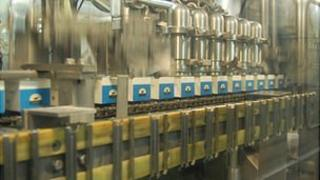 Milk cartons being filled in the Guernsey Dairy