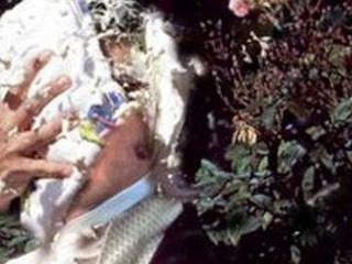 A man dressed as Mr Darcy gets a custard pie thrown in his face
