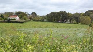 Field in the Forest, Guernsey, where a plane crashed in January 1999