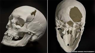 The new reconstruction of the skull from the side and underneath