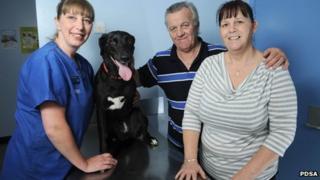 PDSA Vet Nurse Karen Jones with Missy and owners John and Alison Staniforth
