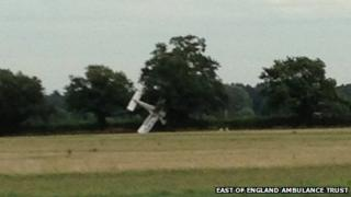 Crashed plane in tree