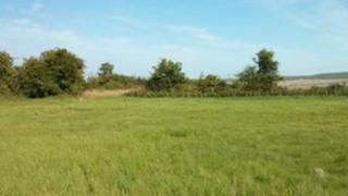 Land near Cannings Cross Farm
